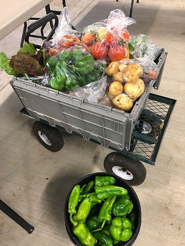 Market on the Mound vegetables.jpg