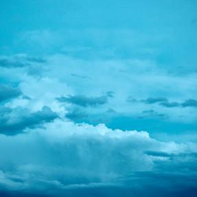 2021.5.3.(月)春の嵐の跡に