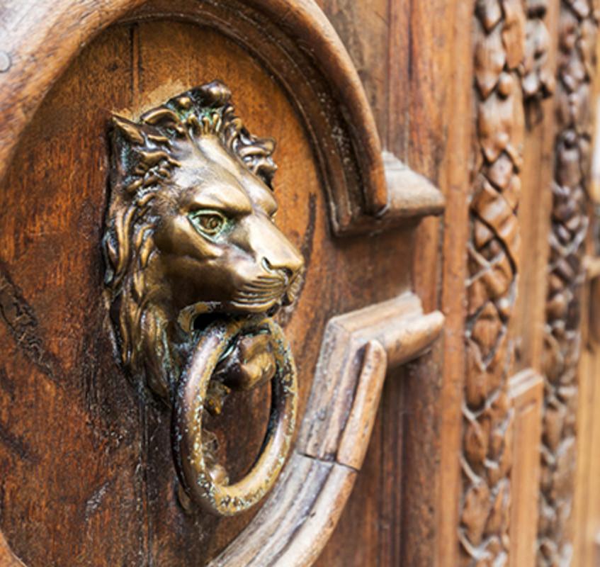 salvage door + knocker