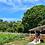 Thumbnail: 4 NOCHES HOTEL BALNEARIO SOLARES + ACTIVIDADES