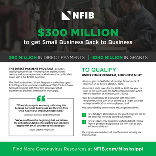 MS Small Business Grant Infographic