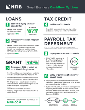 COVID-19 Small Business Cashflow Infographic One-sheet