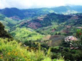 350px-Green_mountains_Ban_Ho_Mae_Salong.