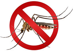 mosquito-stop-sign-vector-7808187_edited
