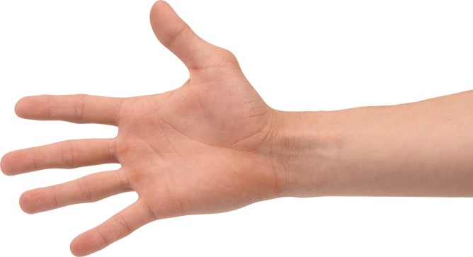 hands_PNG929.png