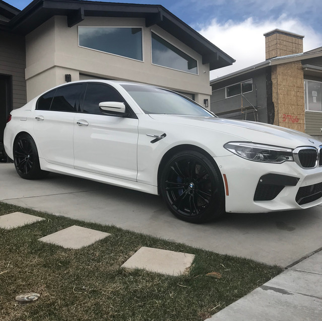 Detailed & Tinted