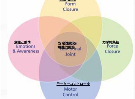 【ITコラム】関節安定性への4つの取り組み