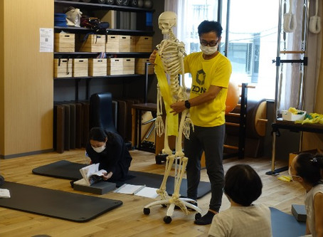 解剖学集中コース【2020年8月】