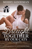 contemporary romance, beta reading, proofreading, editing