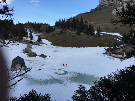 Grand Glacier de Chartreuse