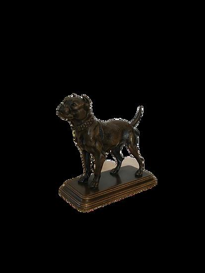 Bronze animalier ancien : le boxer de Dubucand époque XIX ème