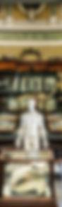 musee-danatomie-univ-de-montpellier.jpg