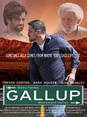 GALLUP.png
