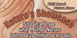 Natures Showcase.tif