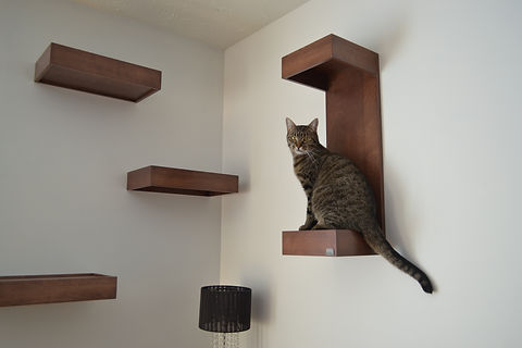 tablettes murales pour chat Huve collection