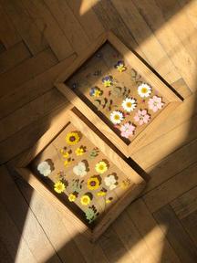 Květinové obrázky