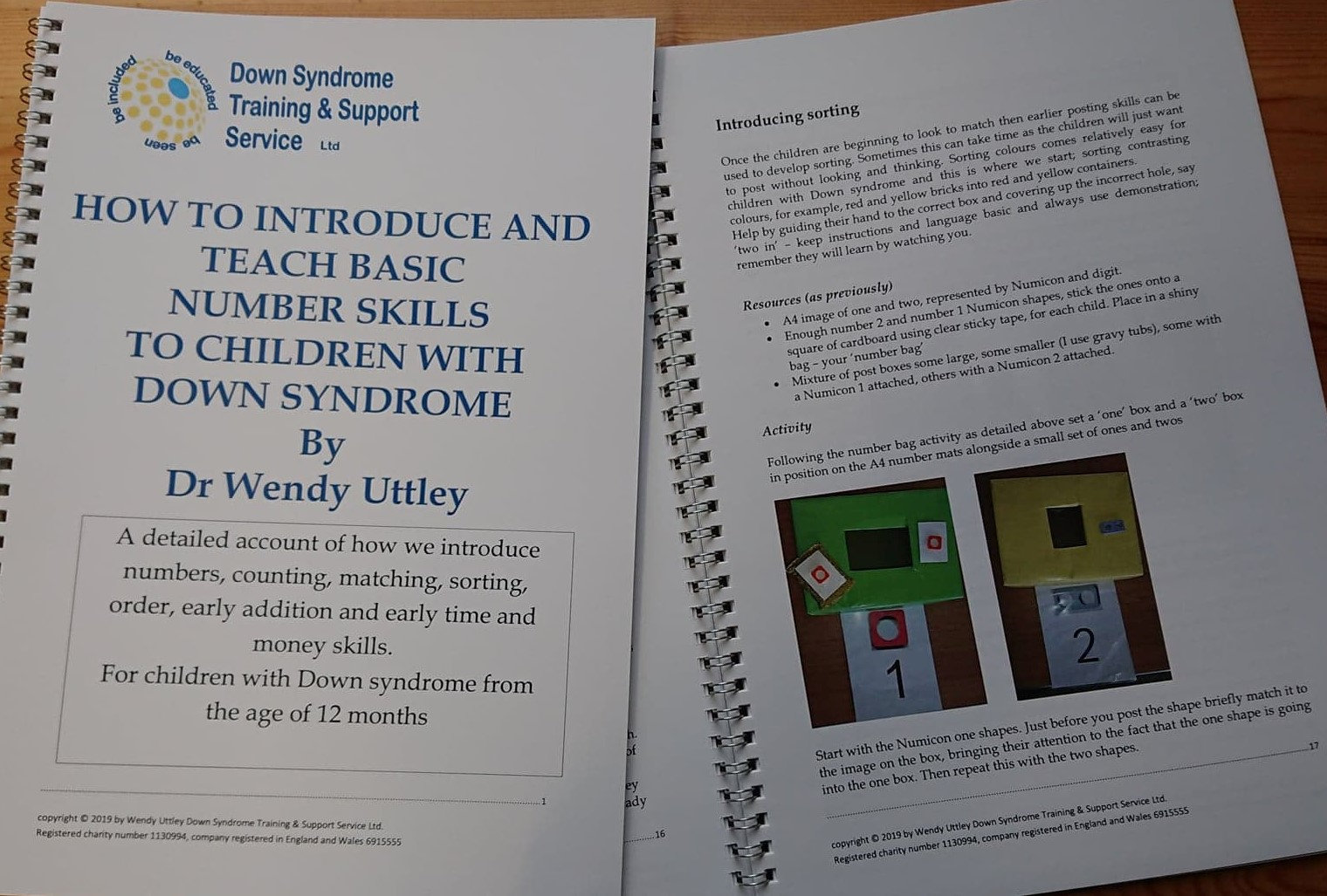 Teaching basic number skills and DS