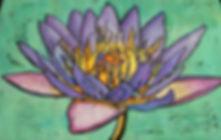 Lotus by Robert Finn