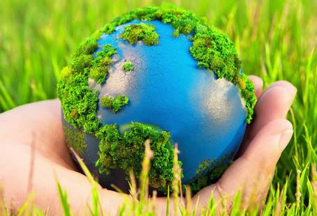 Поправки в законодательство по обязанности кампаний ликвидировать причиняемый вред экологии