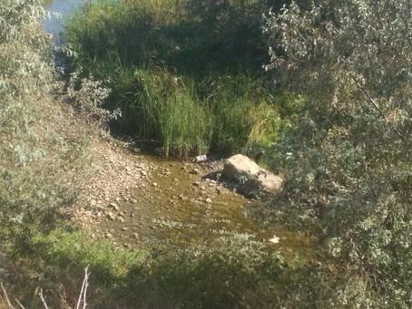 Жители берега Каспия остались без воды