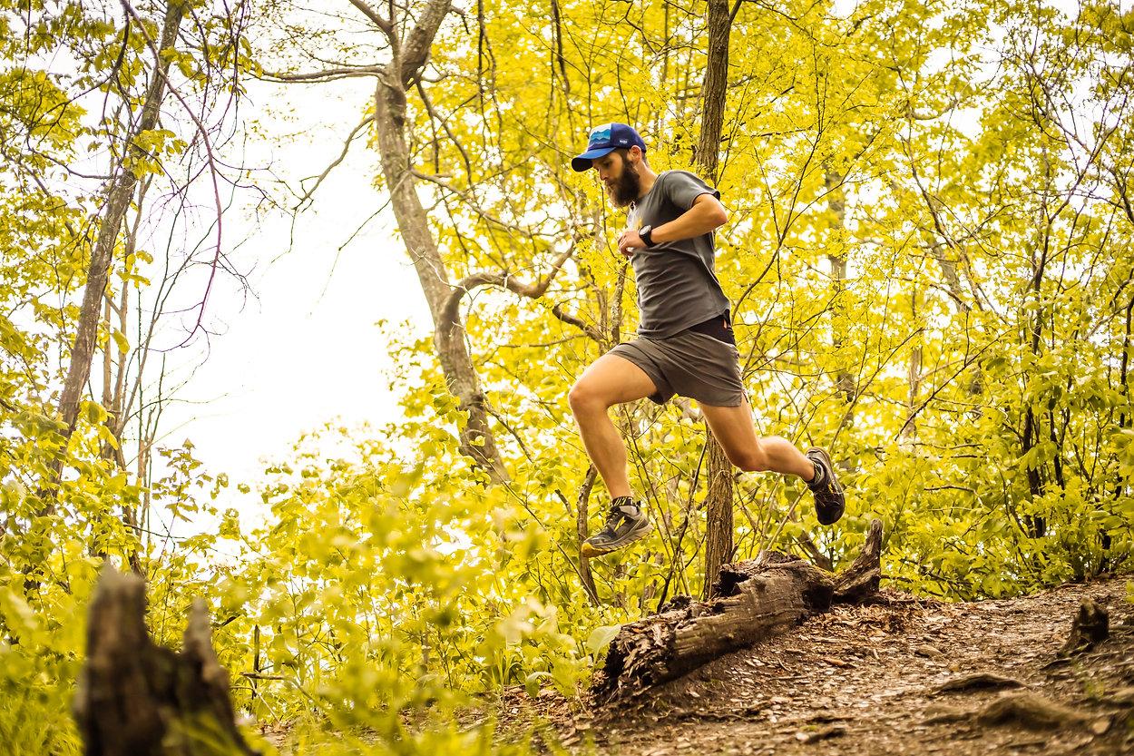 treat_jump_warm-VR-bright.jpg