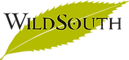New-Green-WS-Logo.png