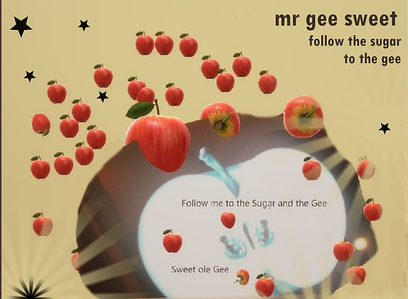 follow gee with text square and stars.jp