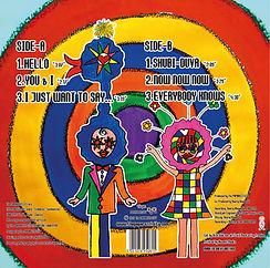 Vinyl back image