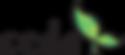 CEDA Logo 2.png