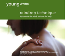 Raindrop Session