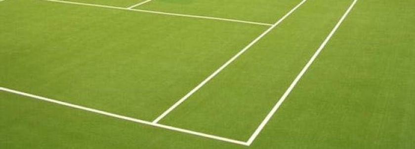 Grass court 2.jpg