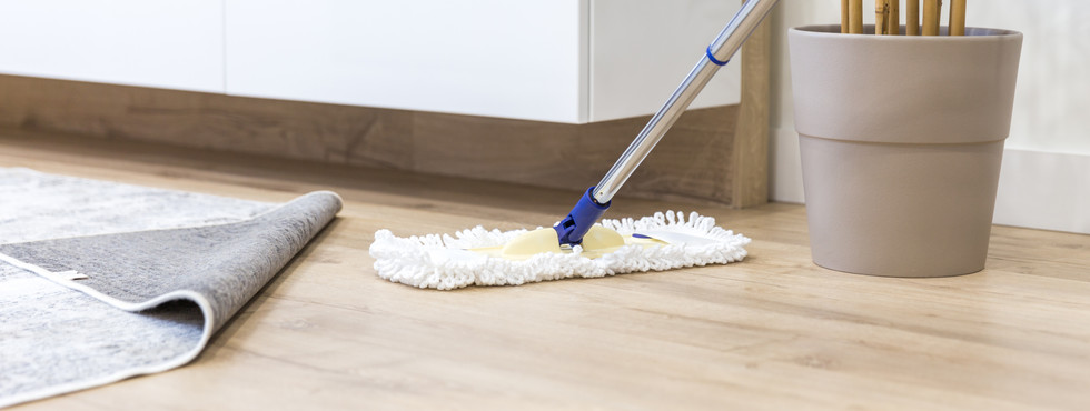 Mopping-Provide-another-mother Adobe 1.j