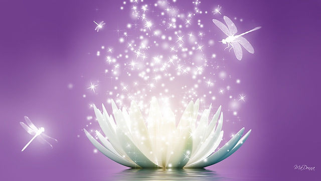 purple white lotus energy.jpg