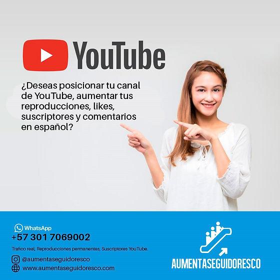 reproducciones youtube