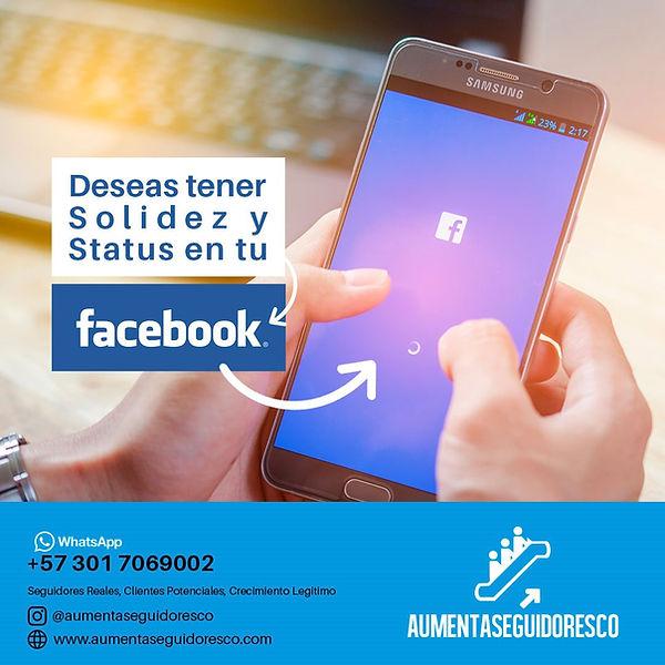 fanpage likes facebook