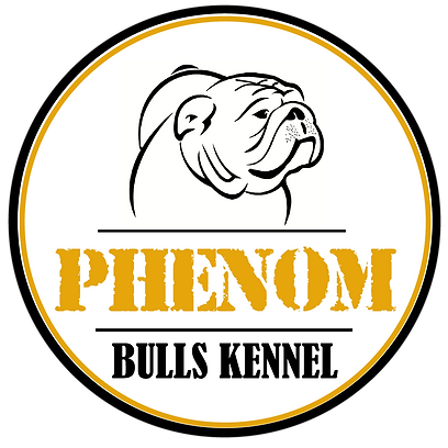 #PHENOM-BULLS-KENNEL-BRANCO.png