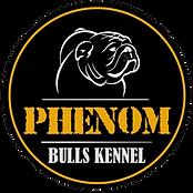 #PHENOM-BULLS-KENNEL.png