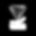 Revolux Studios Records - Logo - White.p