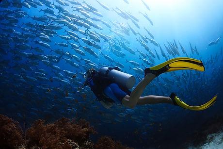 Scuba diver finning_small.jpg