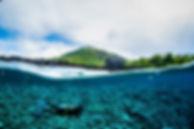 Diver_coast_small.jpg