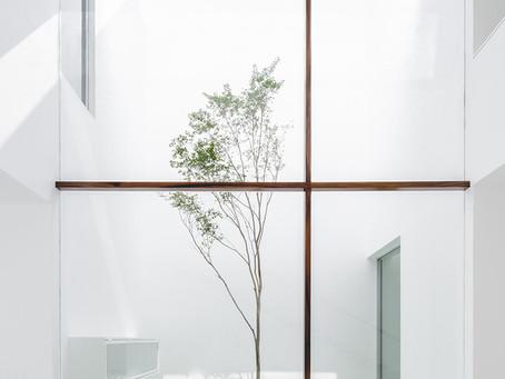 Materiales arquitectónicos del 2020