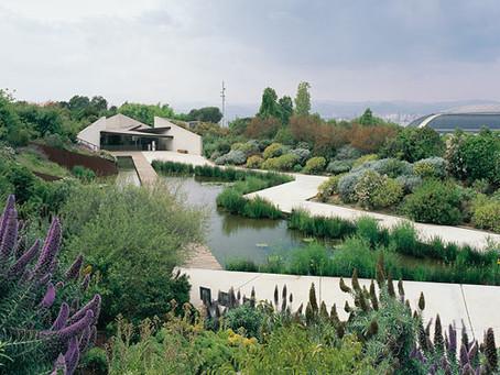 Descubriendo el Jardín Botánico de Barcelona