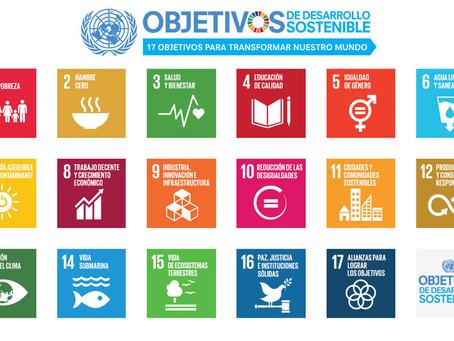 Objetivos de Desarrollo Sostenible en el sector de la edificación: proteger el planeta y la salud