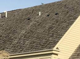 The Homeowner's Guide to Fall Roof Maintenance