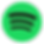 Spotify-music-streaming-service-India-30