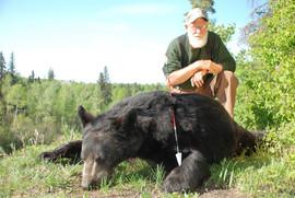 Hoker-2016-bear.jpg