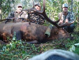 Penner Elk 2011.JPG