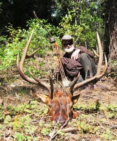 David Peterson Elk.JPG