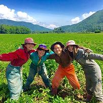 本気の農作業体験 - コピー_edited.jpg