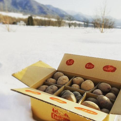 越冬MOTTAINAイモ食べ比べ5㎏